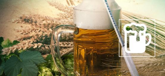 Entender El Hidrómetro: El Secreto Para Elaborar Una Gran Cerveza