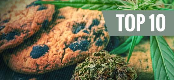Los 10 Errores Más Comunes Cuando Se Cocina Con Cannabis (Y Cómo Evitarlos)