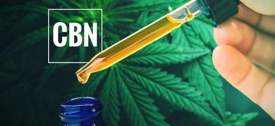 ¿Qué Es El Aceite De CBN?