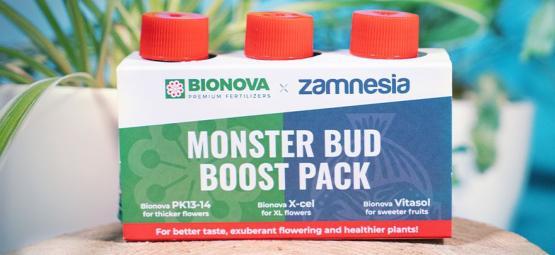 Usa Monster Bud Boost Pack Para Cultivar Mejores Cogollos De Marihuana