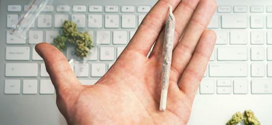 Carreras con Cannabis - Encuentra el Trabajo 420 de tus Sueños