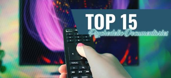 Top 10 de Documentales Psicodélicos