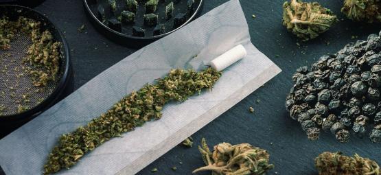 ¿Puede La Pimienta Negra Regular Los Efectos De La Marihuana?
