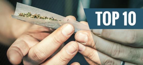 Las 10 Mejores Alternativas Al Tabaco De Los Canutos
