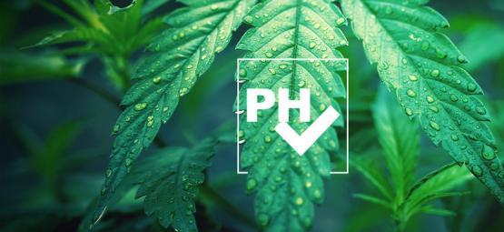 Cómo Ajustar El Valor De pH Al Cultivar Cannabis