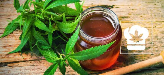 Receta: Cómo Hacer Miel con Cannabis
