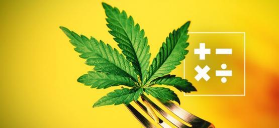 Cómo Calcular La Potencia Del THC En Comestibles