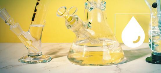 ¿Se Filtra El THC En El Agua Del Bong?