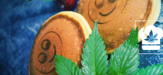 Cómo Hacer Deliciosas Tortitas Con Cannabis