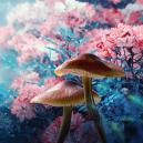 ¿Inducen las Setas Mágicas 'Sueños Lúcidos'?