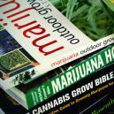 Mejores Libros Sobre Cultivo De Marihuana