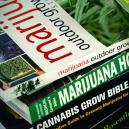 Top 6 libros sobre cultivo de marihuana