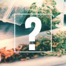 Joints, Blunts y Spliffs: ¿En qué se diferencian?