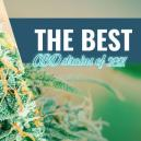 Las mejores variedades de CBD para cultivar en casa