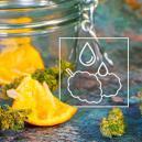 Cómo Salvar La Marihuana Demasiado Seca