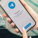 Sigue A Zamnesia En Telegram