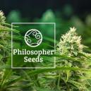 5 consejos de Philosopher Seeds para el cultivo